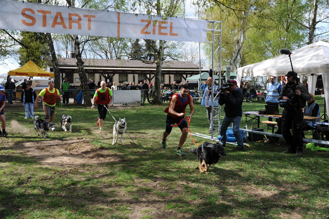 Der SWR berichtet in der Landesschau vom Dog-Biathlon
