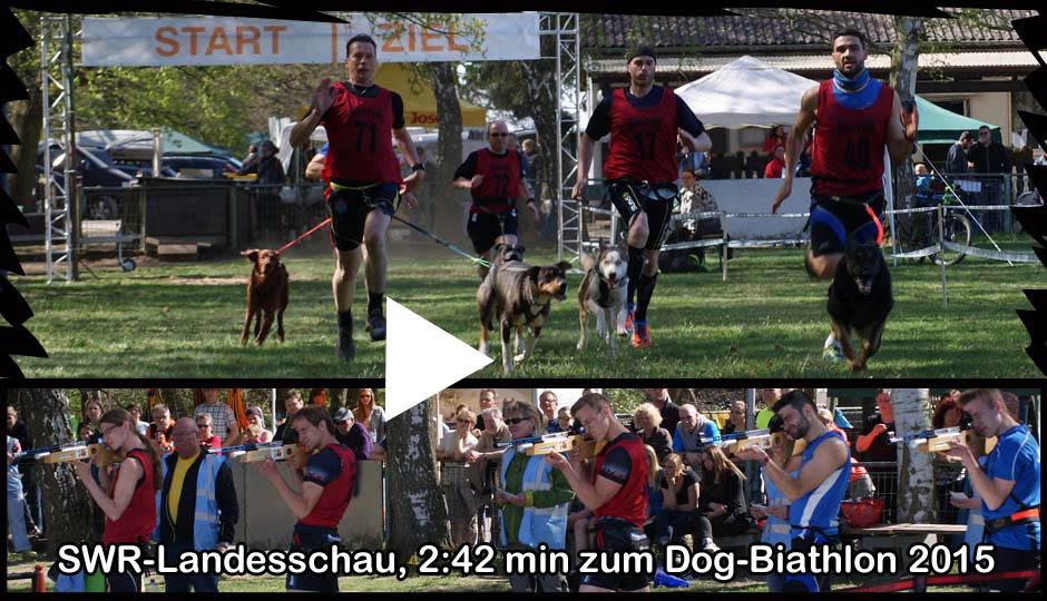 Dog-Biathlon SWR Landesschau 2015